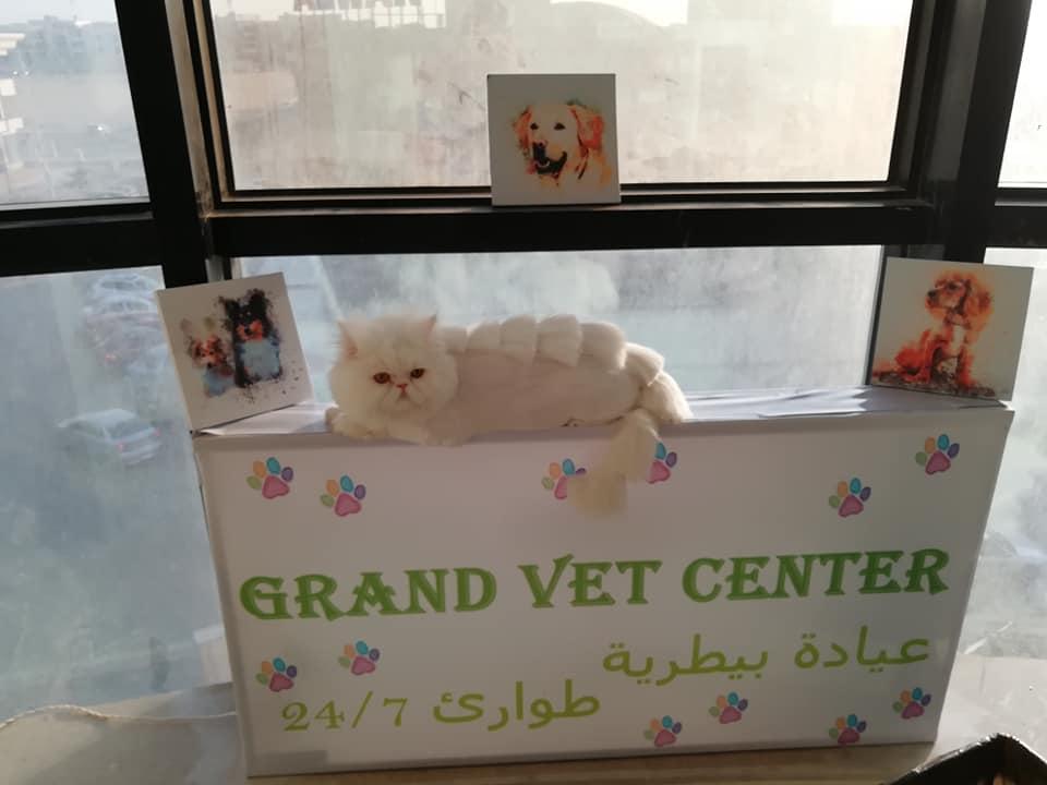 Grand vet center
